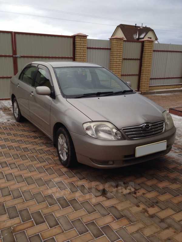 Toyota Corolla, 2003 год, 305 000 руб.