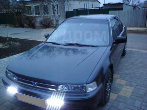 Honda Accord, 1993 год, 180 000 руб.