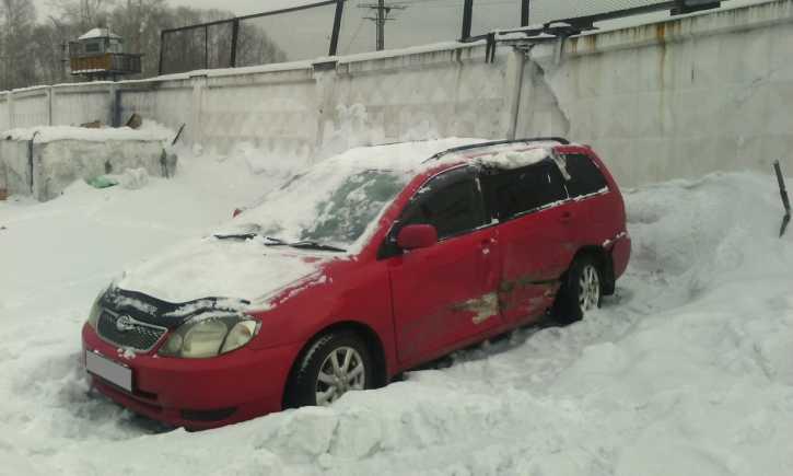 Toyota Corolla Fielder, 2001 год, 180 000 руб.