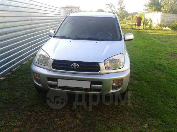 Toyota RAV4, 2002 год, 390 000 руб.