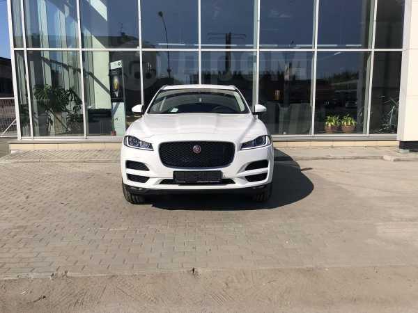 Jaguar F-Pace, 2019 год, 3 994 000 руб.