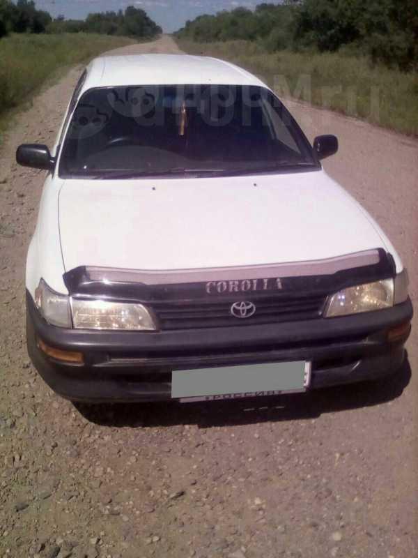 Toyota Corolla, 2001 год, 160 000 руб.