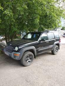 Омск Liberty 2002