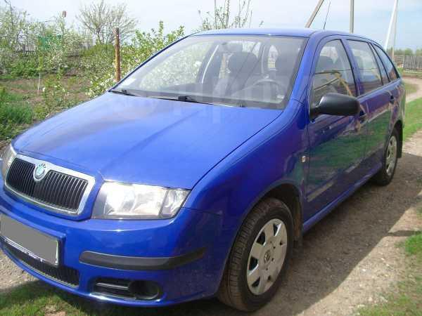 Skoda Fabia, 2005 год, 300 000 руб.