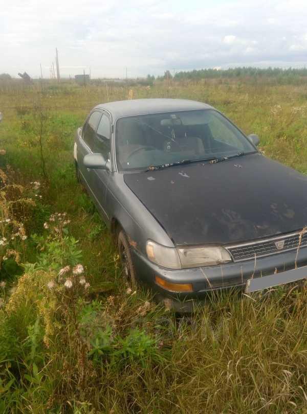 Toyota Corolla, 1996 год, 30 000 руб.