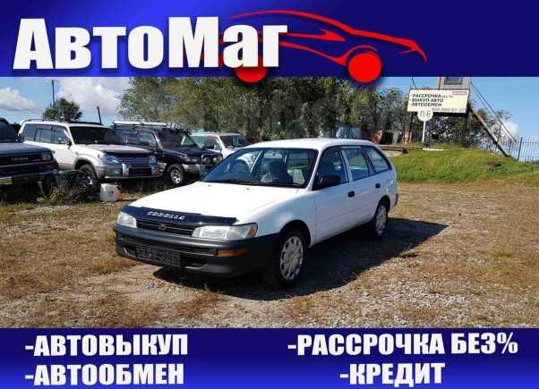 Toyota Corolla, 2000 год, 258 000 руб.