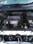 Toyota Ipsum, 1997 год, 320 000 руб.