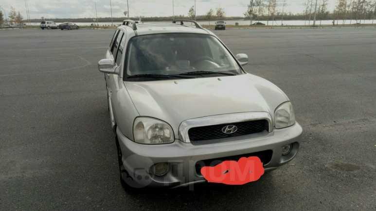 Hyundai Santa Fe, 2003 год, 280 000 руб.