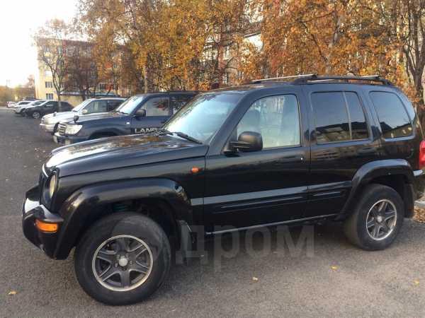 Jeep Cherokee, 2003 год, 489 999 руб.