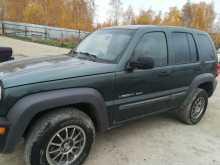 Челябинск Liberty 2002