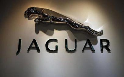 Jaguar Land Rover может объединиться с Geely или BMW