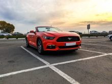 Омск Mustang 2016