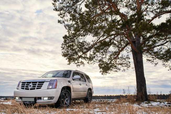 Cadillac Escalade, 2008 год, 1 250 000 руб.
