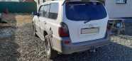 Hyundai Terracan, 2002 год, 550 000 руб.