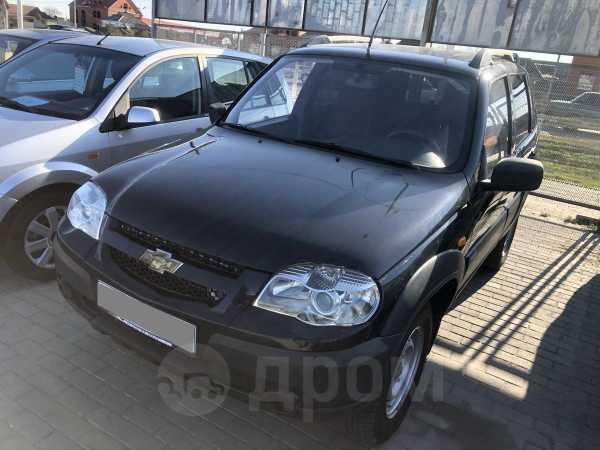 Chevrolet Niva, 2010 год, 299 000 руб.