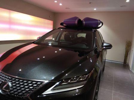 Lexus RX300 2019 - отзыв владельца