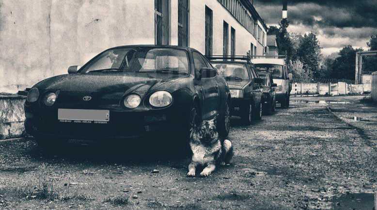 Toyota Celica, 1995 год, 285 000 руб.