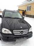 Mercedes-Benz M-Class, 1998 год, 430 000 руб.