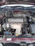 Toyota Caldina, 1994 год, 195 000 руб.