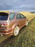 Lexus RX300, 1999 год, 460 000 руб.