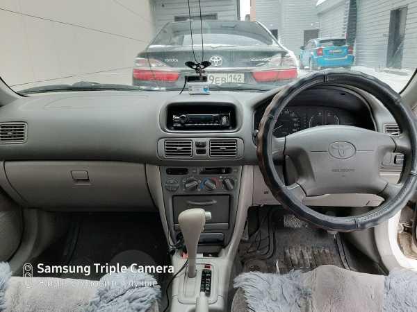 Toyota Corolla, 1999 год, 230 000 руб.
