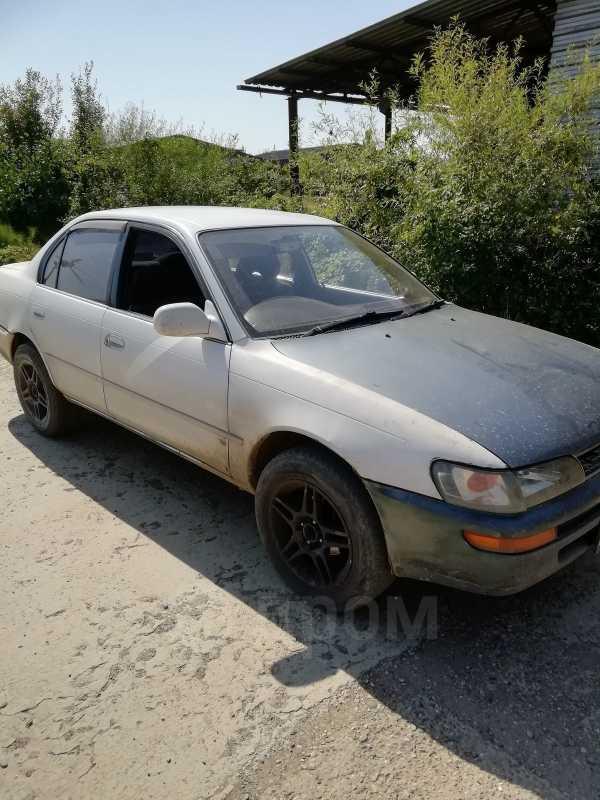 Toyota Corolla, 1993 год, 60 000 руб.