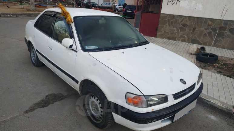Toyota Corolla, 1995 год, 89 999 руб.