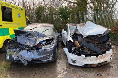 Две Tesla Model X спасли жизни британцам, среагировав на падающий 400-летний дуб