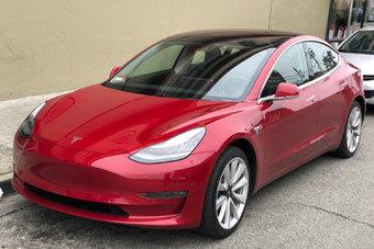 Экологи бодались с Tesla больше месяца — и проиграли.