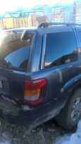 Jeep Grand Cherokee, 2002 год, 250 000 руб.