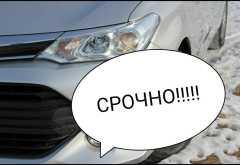 Чита Corolla Fielder