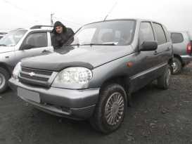 Шахты Niva 2006