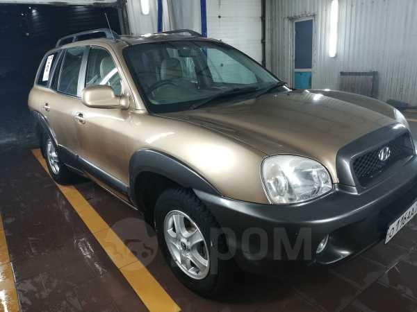 Hyundai Santa Fe Classic, 2002 год, 300 000 руб.