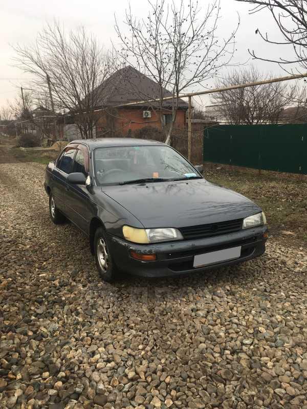 Toyota Corolla, 1993 год, 106 000 руб.