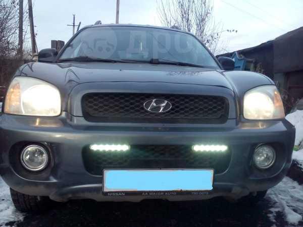 Hyundai Santa Fe Classic, 2002 год, 280 000 руб.