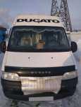 Fiat Doblo, 2010 год, 550 000 руб.