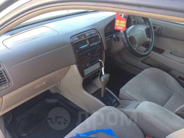 Toyota Camry, 1998 год, 227 000 руб.
