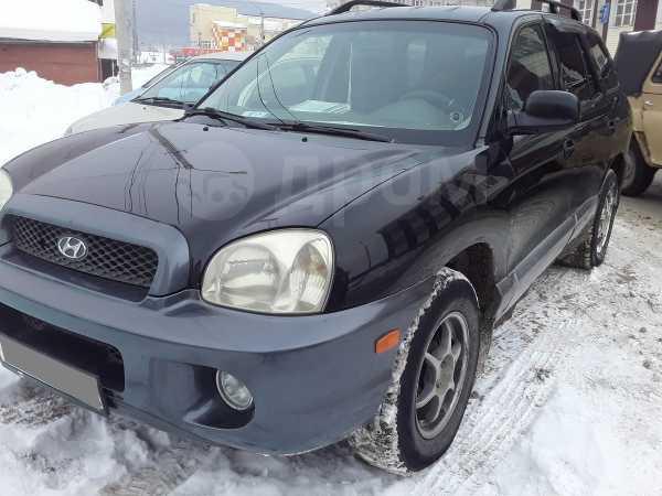 Hyundai Santa Fe Classic, 2002 год, 350 000 руб.
