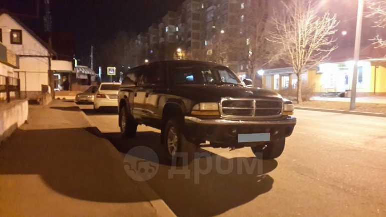 Dodge Dakota, 2001 год, 570 000 руб.