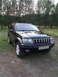 Jeep Grand Cherokee, 2002 год, 530 000 руб.