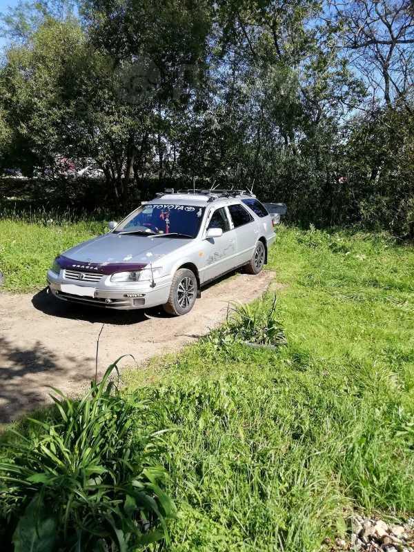 Toyota Camry Gracia, 1997 год, 245 000 руб.