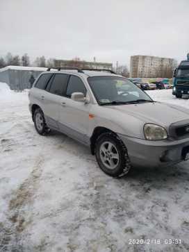 Пермь Santa Fe 2003
