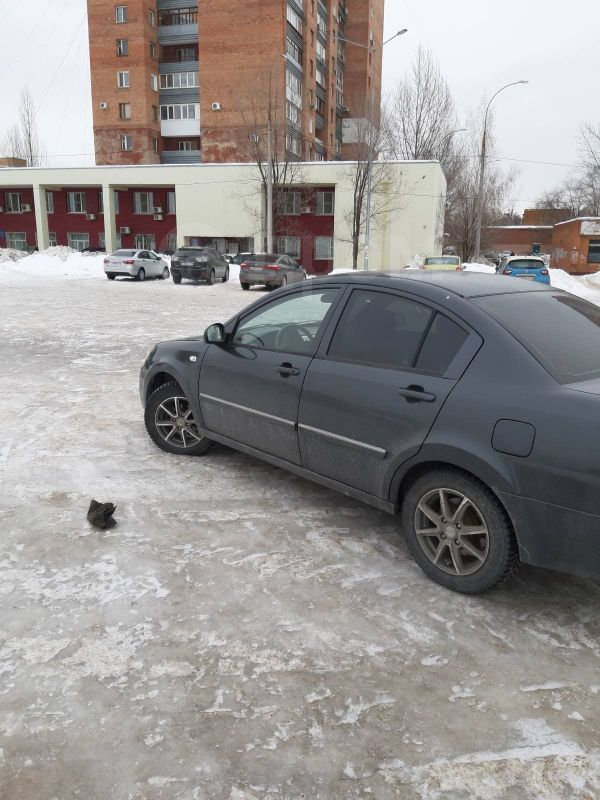 Vortex Estina, 2010 год, 178 000 руб.
