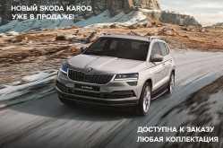 Омск Skoda Karoq 2020
