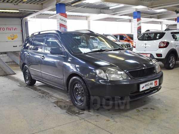 Toyota Corolla Fielder, 2001 год, 252 000 руб.