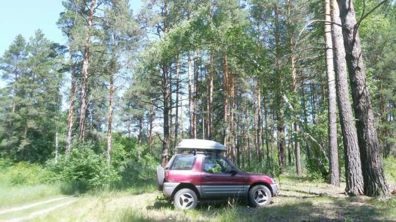 Toyota RAV4, 1996 год, 310 000 руб.