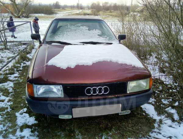 Audi 80, 1991 год, 43 000 руб.