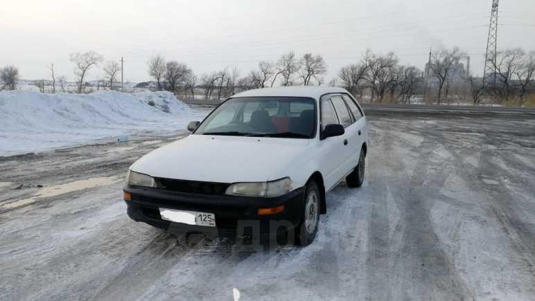 Toyota Corolla, 1996 год, 63 000 руб.