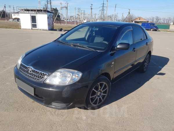 Toyota Corolla, 2003 год, 279 000 руб.