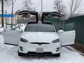 Вольно-Надеждинское Model X 2017